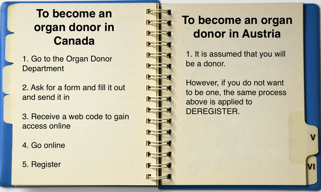 Organ Donor Process